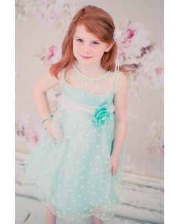 Darling Organza Polkadot Dress